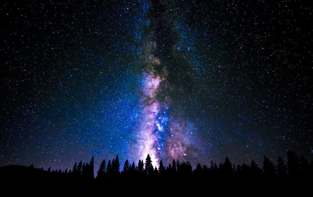 treeline visible against a dark purple, starry sky