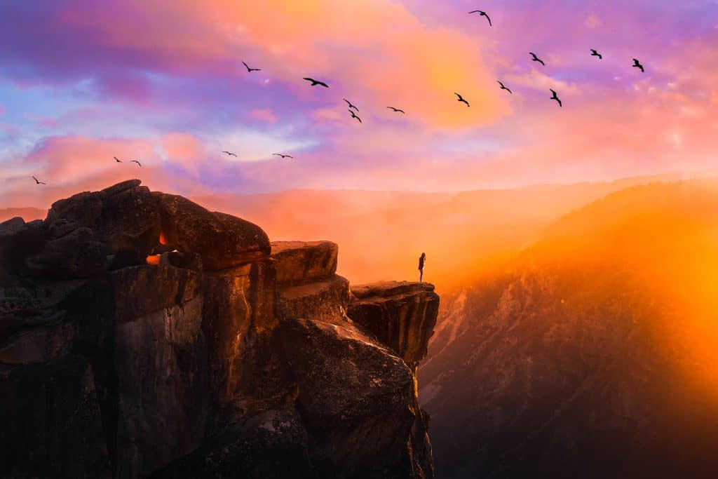 person standing on cliff edge in front of radiant sunset with birds flying overhead